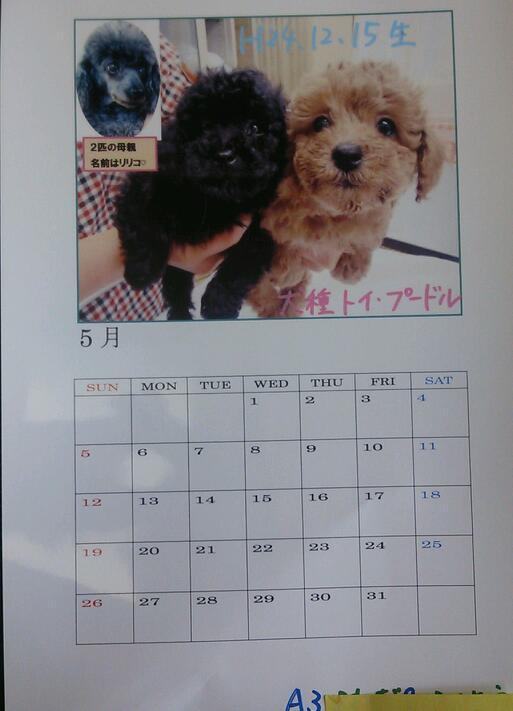 手作りカレンダー♪